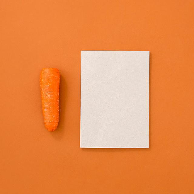 foodpaper野菜と果物からできたノート
