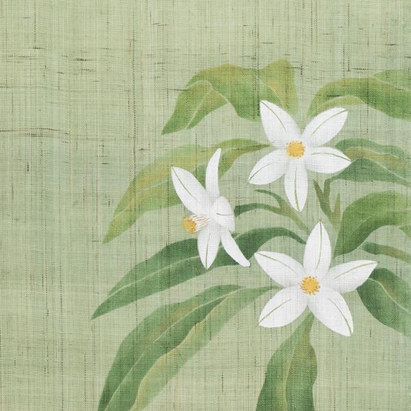 タペストリー 花景色 夏蜜柑