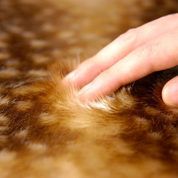 Fabrico チェアパッド bambi / light brown