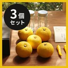 【3個セット】よしえ食堂 11月の黄ゆずごしょうキット【クール宅配便送料込】【第1弾:11/5~発送予定】